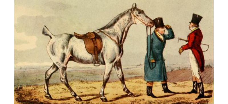 Gentlemen discuss a grey hunter, by H.T. Alken (1785 - 1851).